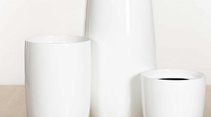 Citygreen Indoor Plants Hire - White Vase Planters